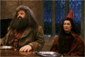 Hagrid and Vector.png