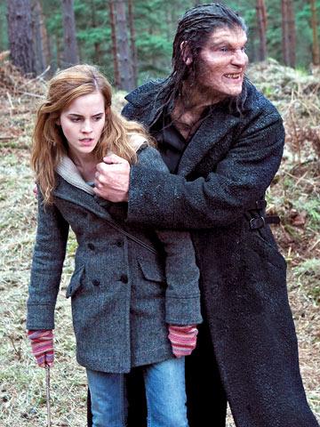 File:Greybackhermione.jog.jpg