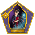 Harry Potter-100-chocFrogCard