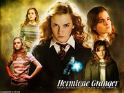 Hermione-Wallpapers-hermione-granger-7823429-1024-768