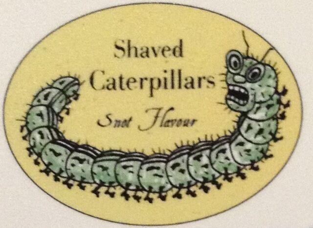 File:ShavedCaterpillars.jpg