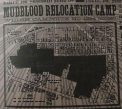 MudbloodRelocationCamp