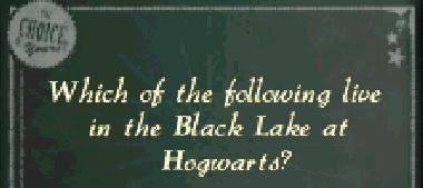 File:Screenshot 412 (Nintendo DS).png