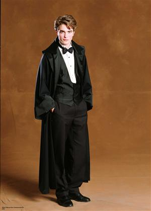 File:Cedric Diggory™ in Dress Robes.JPG