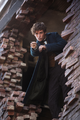 Newt promo wand.png