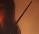 Salazar Slytherin's wand