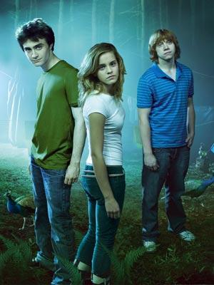File:Harry-potter-ron-harry-hermione.jpg
