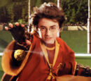 Gryffindor vs Slytherin Quidditch match (1991)