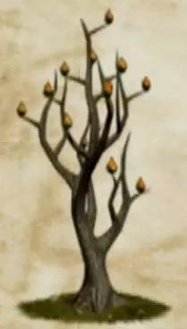 File:Fire Seed Bush.jpg
