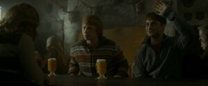 Conservation and Butterbeer