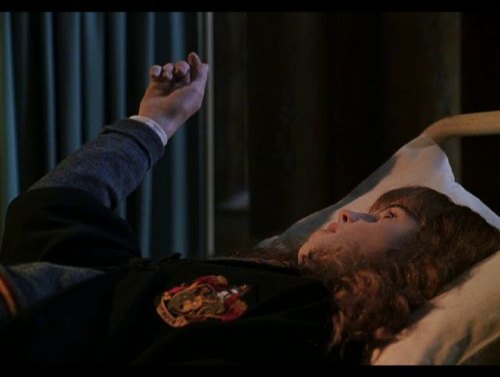 E Hogwart Pl Petryfikacja | Harry P...