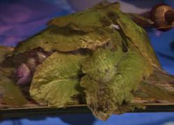 LettuceLeaves