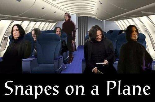 File:Snapes om a plane.jpg