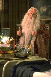 Dumbledore Harris.JPG