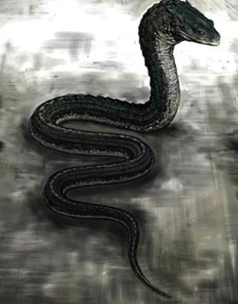 File:Slytherin's Basilisk.jpg