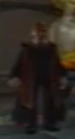 Gryffindorprefect
