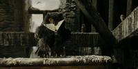 Sirius Black's owl