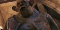 Quirinus Quirrell's first mountain troll