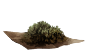File:DriedNettles.png