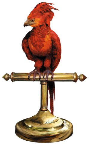 File:Fawkes perch.png