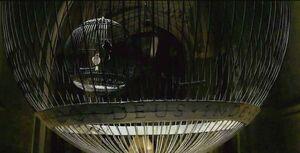 Birdcage HBP