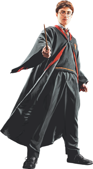 Harry in Robe with Wand Front View (Painting) - Harry Potter and the Half-Blood Prince™.png