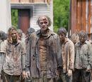 Walking Dead/Episodes
