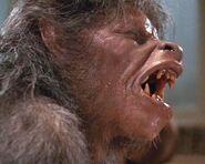 Kessler werewolf 003
