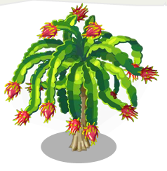 dragonfruit tree here be monsters wiki fandom powered