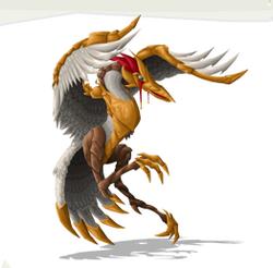 Bird ares