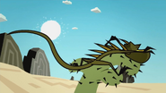 Iguanas 065