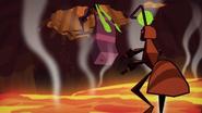 Ants 067