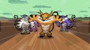 Tiger King 012