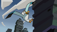 Prince of Seagulls 018