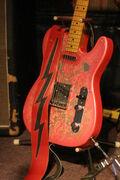 Paisley Guitarra2.jpg