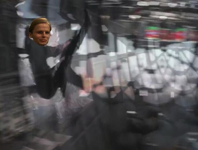 File:Werner falls from window.jpg