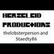 HerzeleidProductions