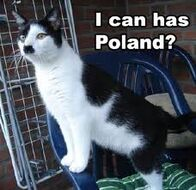 I can has poland