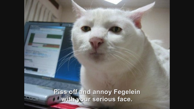 File:Hitler encounters the Serious Cat.png
