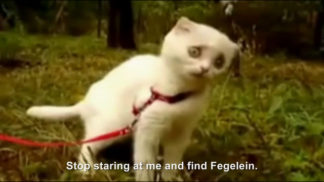 File:Hitler encounters WTF Kitty.png