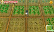 Crops sos