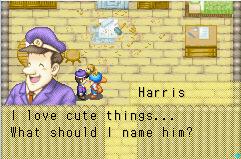 Dog Harris
