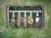 The valves.