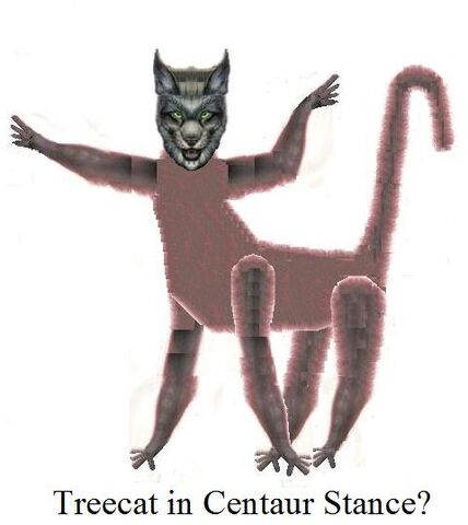 File:Treecat in Centur Stance.jpg