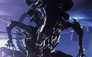 Aliens111