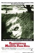 Frankenstein and the monster from hell xlg-1-