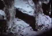 The Wolf Man '41