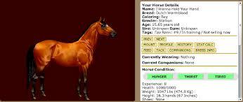 File:Bay horse.jpeg