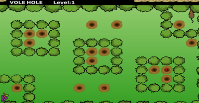 Vole Hole Big Forest Isle In Woods Level 1