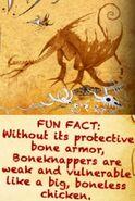 BoneKnapper(armorless)